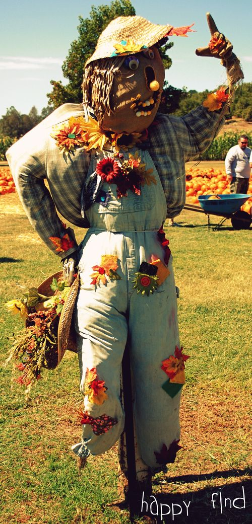 The great pumpkin hunt scarecrow