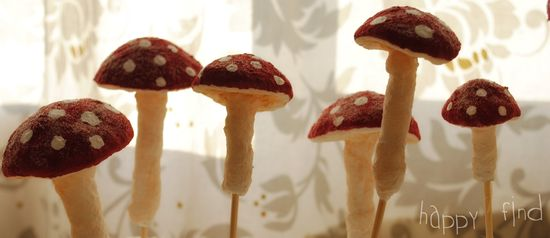 Toadstools in waiting 2
